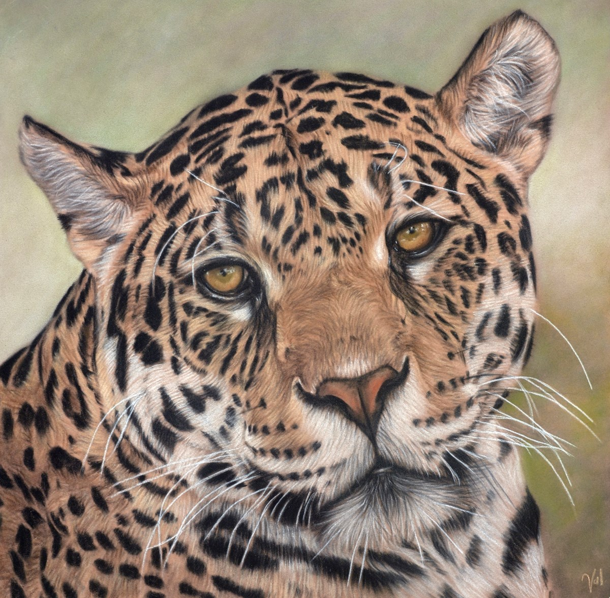 Golden Eyes by valerie simms -  sized 16x16 inches. Available from Whitewall Galleries